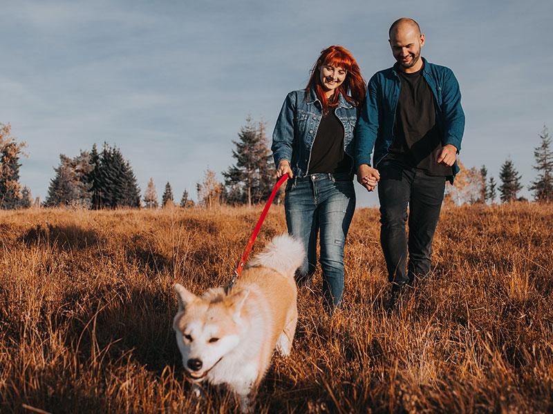 Siguiendo adelante después del divorcio: La culpa contra el perdón