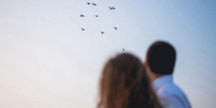 5 Razones para el divorcio y por qué son tan comunes